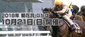 【2018年最新版】競馬のG1レース「菊花賞」を徹底解説