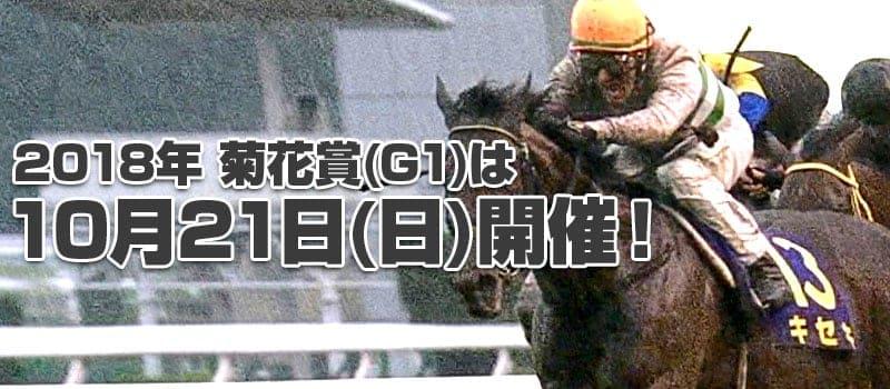競馬 G1 菊花賞