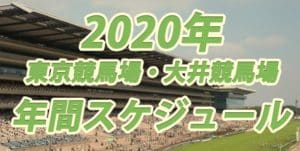 【2020年】競馬の年間スケジュール!東京&大井競馬場版
