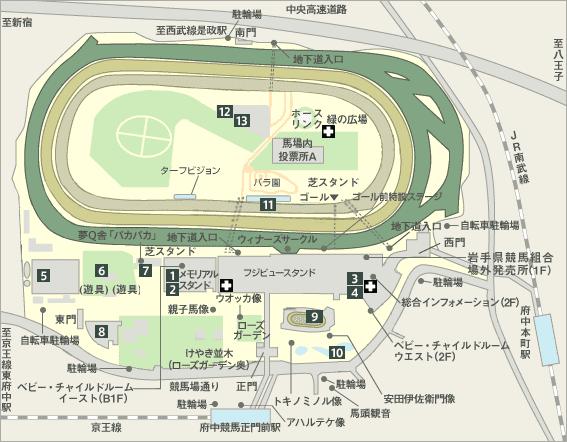 東京競馬場 見取り図