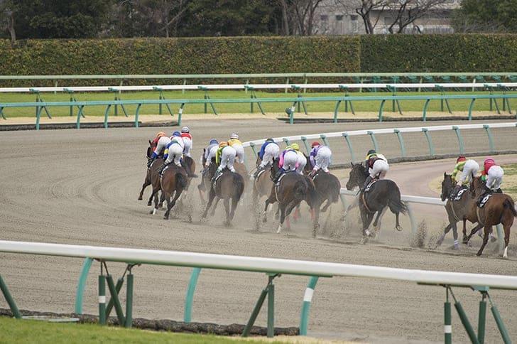 競馬場 レース