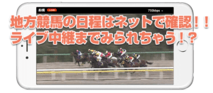 競馬の日程の確認はコレ!~地方編~無料で見れる地方競馬のサイト4選