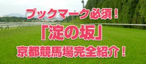 【競馬パーフェクトガイド】京都競馬場編!!絶対に押さえるべきレース3選