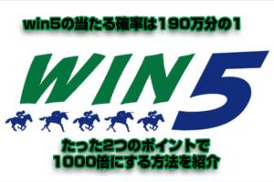 競馬の宝くじwin5の当たる確率を2つのポイントで1000倍にする方法を紹介