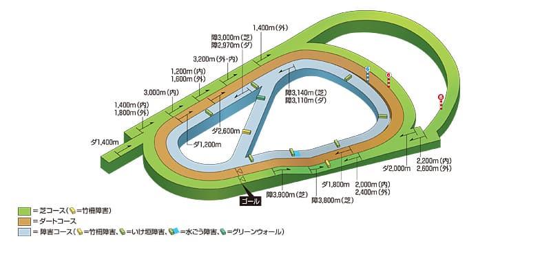 競馬 阪神