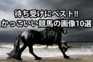 競馬ファン必見!!待ち受け画像にしたくなるかっこいい馬10選を紹介