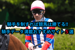 競馬 騎手 データ