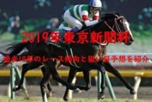 東京新聞杯2019を過去10年のデータから読み解く3つの傾向と穴馬予想
