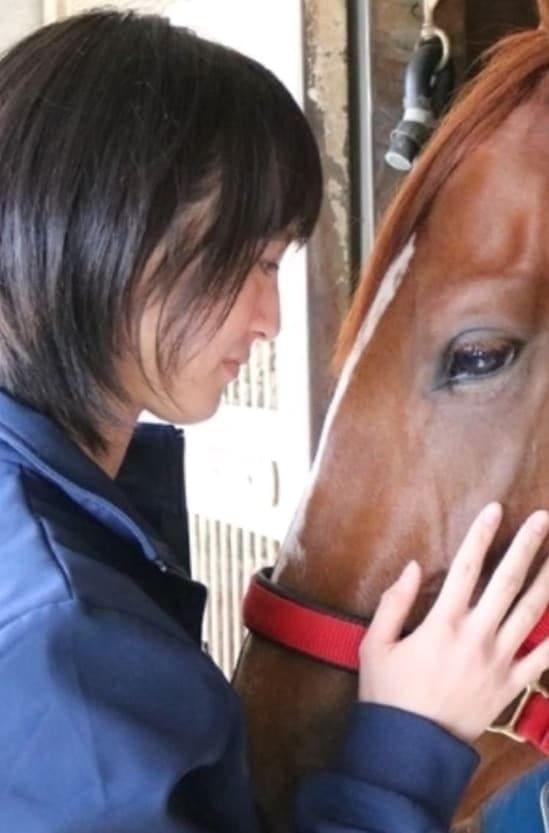 美人騎手 馬
