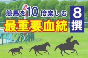 競馬は血統特徴を知って10倍楽しめ!最重要血統8選