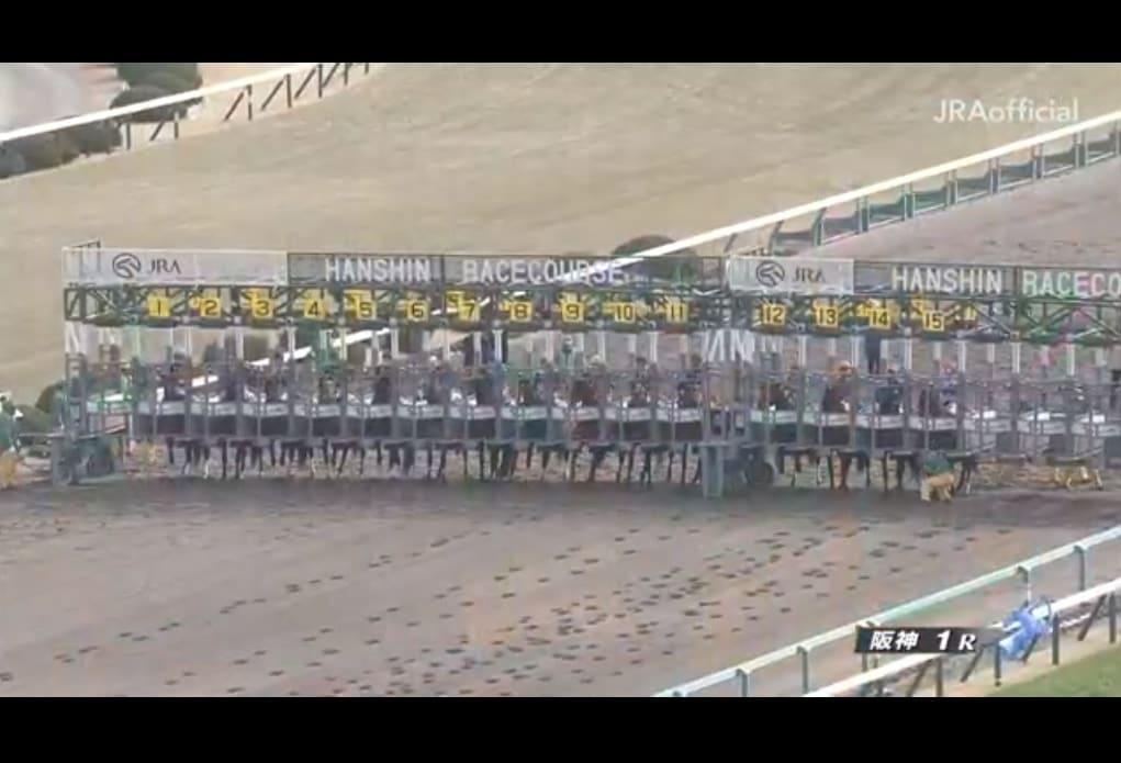 レース動画