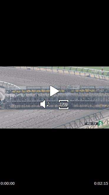 レース映像が表示