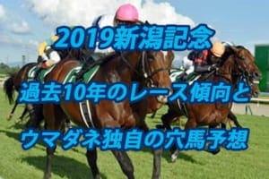 新潟記念2019年過去から見る3つのレース傾向とウマダネ独自の予想