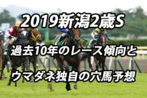 新潟2歳S2019年過去から見る3つのレース傾向とウマダネ独自の予想