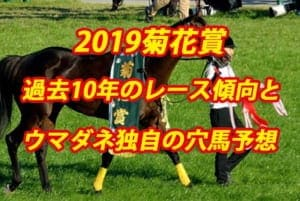 菊花賞2019年過去から見る3つのレース傾向とウマダネ独自の予想
