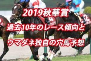 秋華賞2019年過去から見る3つのレース傾向とウマダネ独自の予想