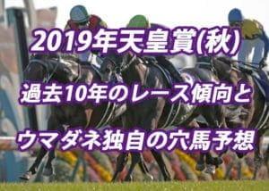 天皇賞(秋)2019年過去から見る3つのレース傾向とウマダネ独自の予想