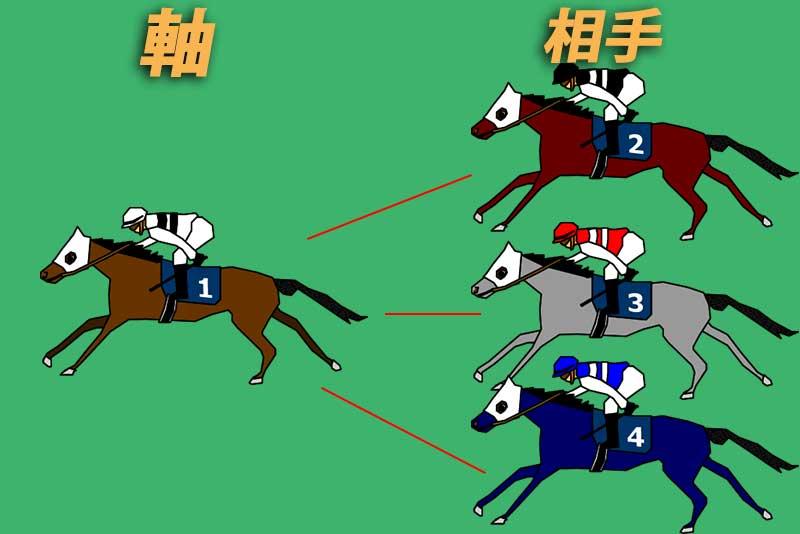 馬連の基本的な買い方①流し