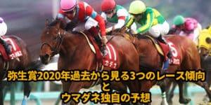 弥生賞2020年過去から見る3つのレース傾向とウマダネ独自の予想