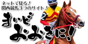ネットで見る!関西競馬3つのサイト!